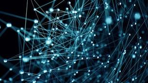 Digitales Netzwerk.jpg